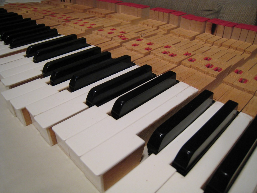Fender Rhodes refurb - keys removed